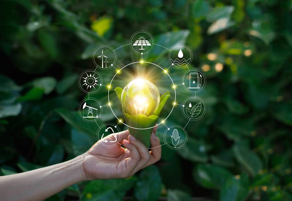 La energía renovable en las empresas