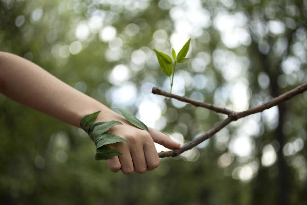 Empresas españolas con el medio ambiente