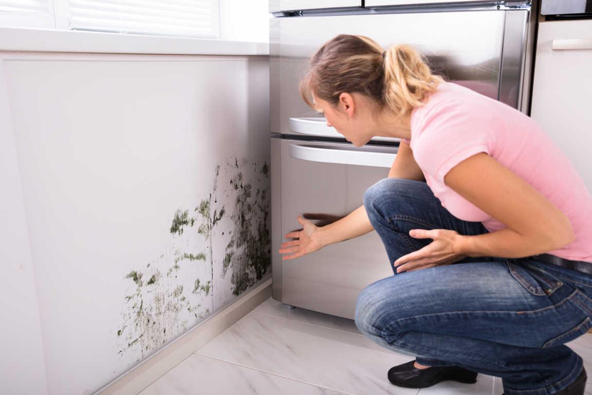 ¿Qué debe tener una buena empresa para quitar humedades?